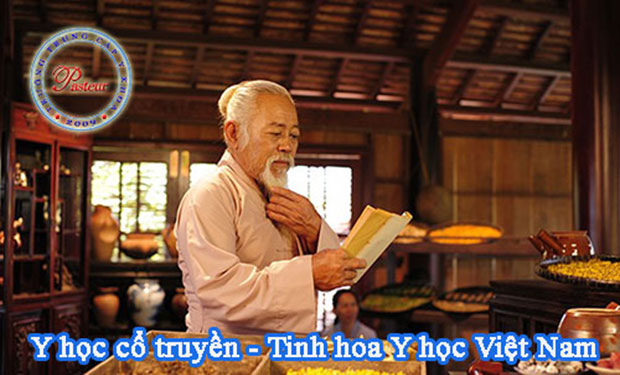 y-hoc-co-truyen-tinh-hoa-y-hoc-viet-nam