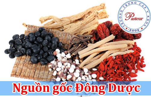 nguon-goc-dong-duoc