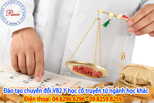 dao-tao-chuyen-doi-vb2-y-hoc-co-truyen