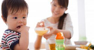 Bài thuốc dân gian trị biếng ăn ở trẻ hiệu quả