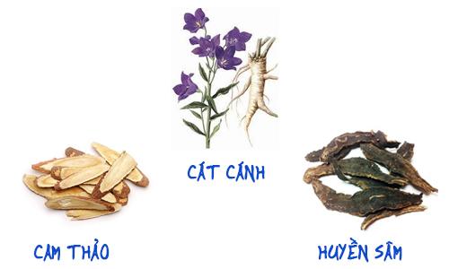 3 vị thuốc Đông y trị ho hiệu quả