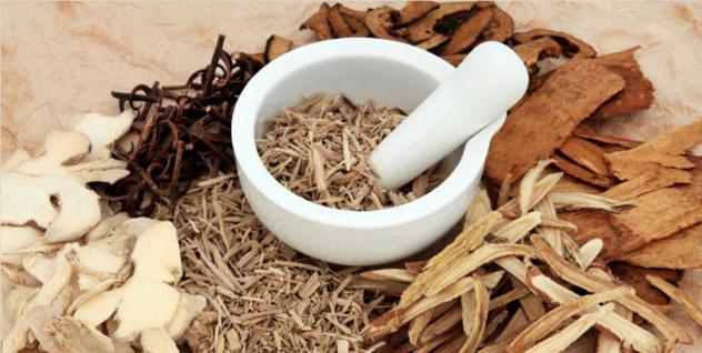 Những thảo dược tốt cho hệ tiêu hóa