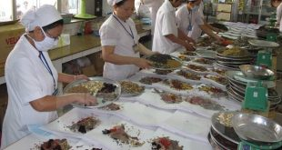Y học Cổ truyền Việt Nam nền Y học quan trọng
