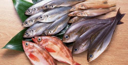 Chỉ nên ăn cá khoảng 2 bữa/tuần
