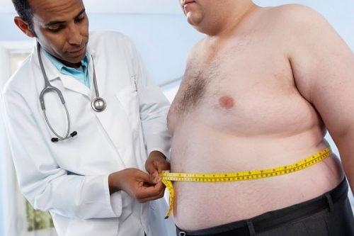 Có nhiều nguyên nhân gây ra bệnh béo phì