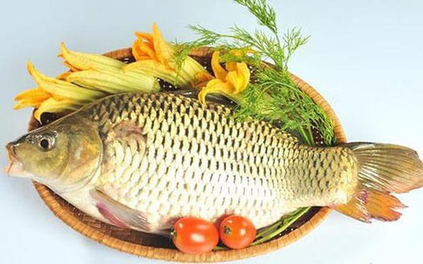 Cá chép có rất nhiều  công dụng đối với sức khỏe