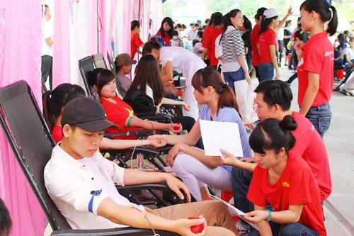 Tân sinh viên Cao đẳng Dược được trải nghiệm với hoạt động tình nguyện