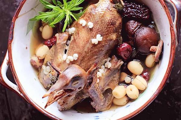 Món ăn bài thuốc từ chim tốt cho sức khỏe