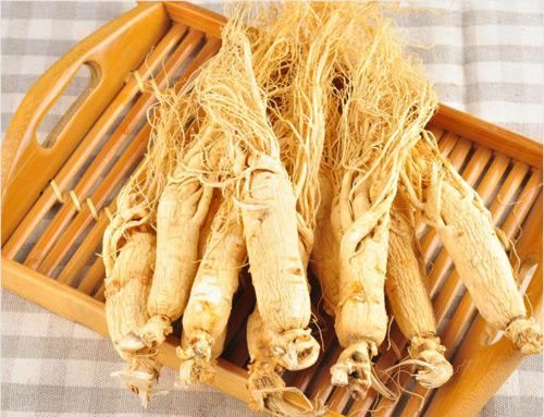 Nhân sâm là vị thuốc Đông y quen thuộc ở châu Á