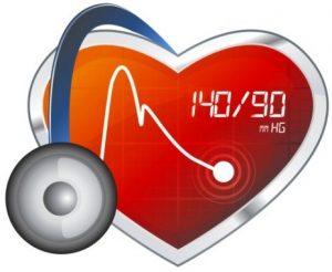 Hoa hồng bạch hỗ trợ điều trị bệnh cao huyết áp
