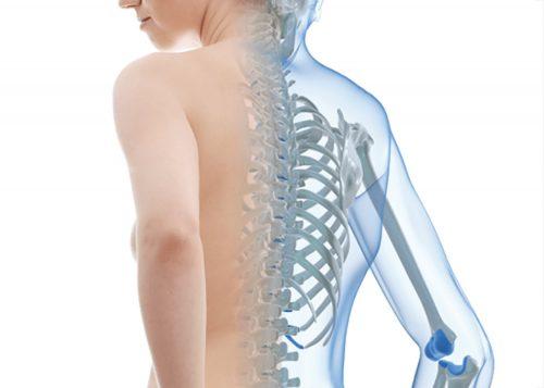 Bật mí một số phương pháp điều trị Bệnh loãng xương hiệu quả cho người lớn tuổi