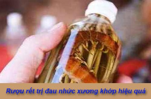 Cách ngâm rượu rết trị đau nhức xương khớp vô cùng hiệu quả