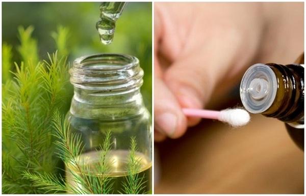 Tinh dầu tràm có thể dùng để bôi rtuwjc tiếp lên da hoặc pha với nước