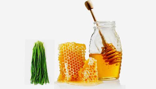 chữa ho hiệu quả bằng mật ong và lá hẹ